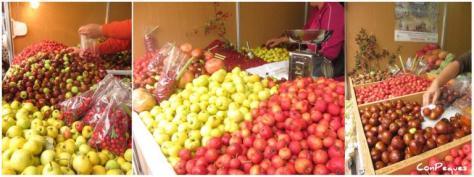 frutos-otoc3b1o